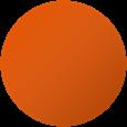 Primo oranžová 2004